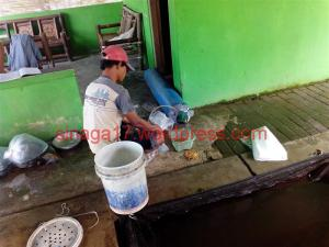 Pasar ikan garongan (12)