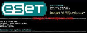 Win32 Spy Zbot